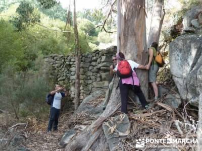 Parque Natural Naturtejo, excursiones de senderismo; sierra de gredos senderismo